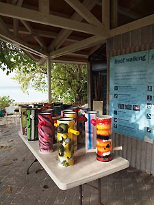 Sea Scopes enable guests to have a closer look at critters living amongst the coral. Heron Island Resort, Australia.