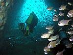 Fish Rock Cave Exit