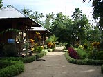 Immaculate gardens at Two Fish, Bunaken, Sulawesi, Indonesia