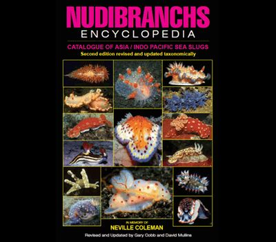 Neville Coleman's new 'Nudibranchs Encyclopedia' - a review and how it compares to the new Debelius and Kuiter 'Nudibranchs of the World'.