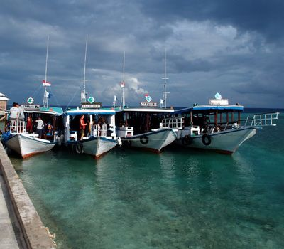 Diving with a Family - Wakatobi Dive Resort