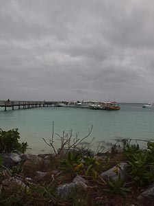 Heron Island Jetty and boats. Heron Island Resort, Australia