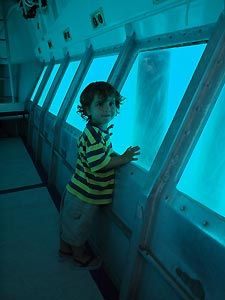 Aboard the semi-submersible. Heron Island Resort, Australia.