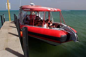 Our vessel with 3x 300hp engines. Exmouth Diving Centre. Exmouth, Western Australia