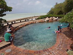Swimming Pool at Heron Island Resort, Australia