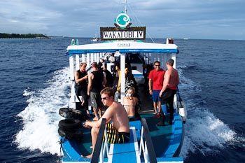 Wakatobi IV dive boat
