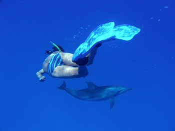 Wandy swimming with Dolphins at Cocos Island, Australia - photographed by underwater australasia director and founder Tim Hochgrebe